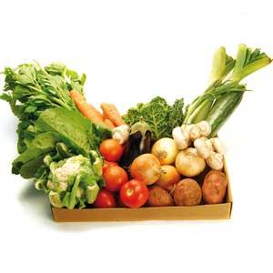 Ларь с подогревом для хранения овощей на балконе | Бизнес идеи