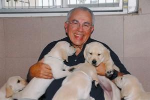 Центр для собак | Бизнес идеи