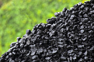 Изготовление древесного угля | Бизнес идеи