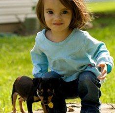 Прокат домашних животных | Бизнес идеи