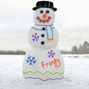 Набор красок для снежной бабы | Бизнес идеи