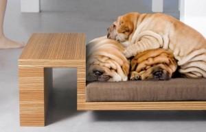 Производство мебели для домашних животных   Бизнес идеи