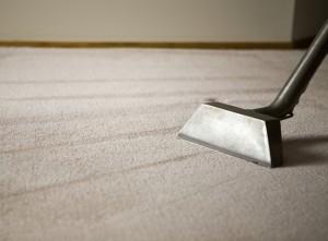 Чистка ковров | Бизнес идеи