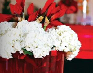 Студия цветов | Бизнес планы