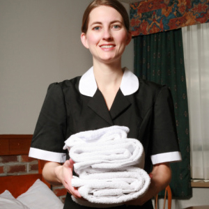 Агентство по подбору домашнего персонала | Бизнес идеи